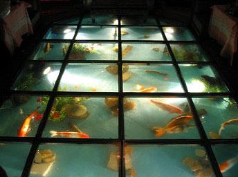 lantai kaca dengan kolam ikan   blog   rumahpropertigratis