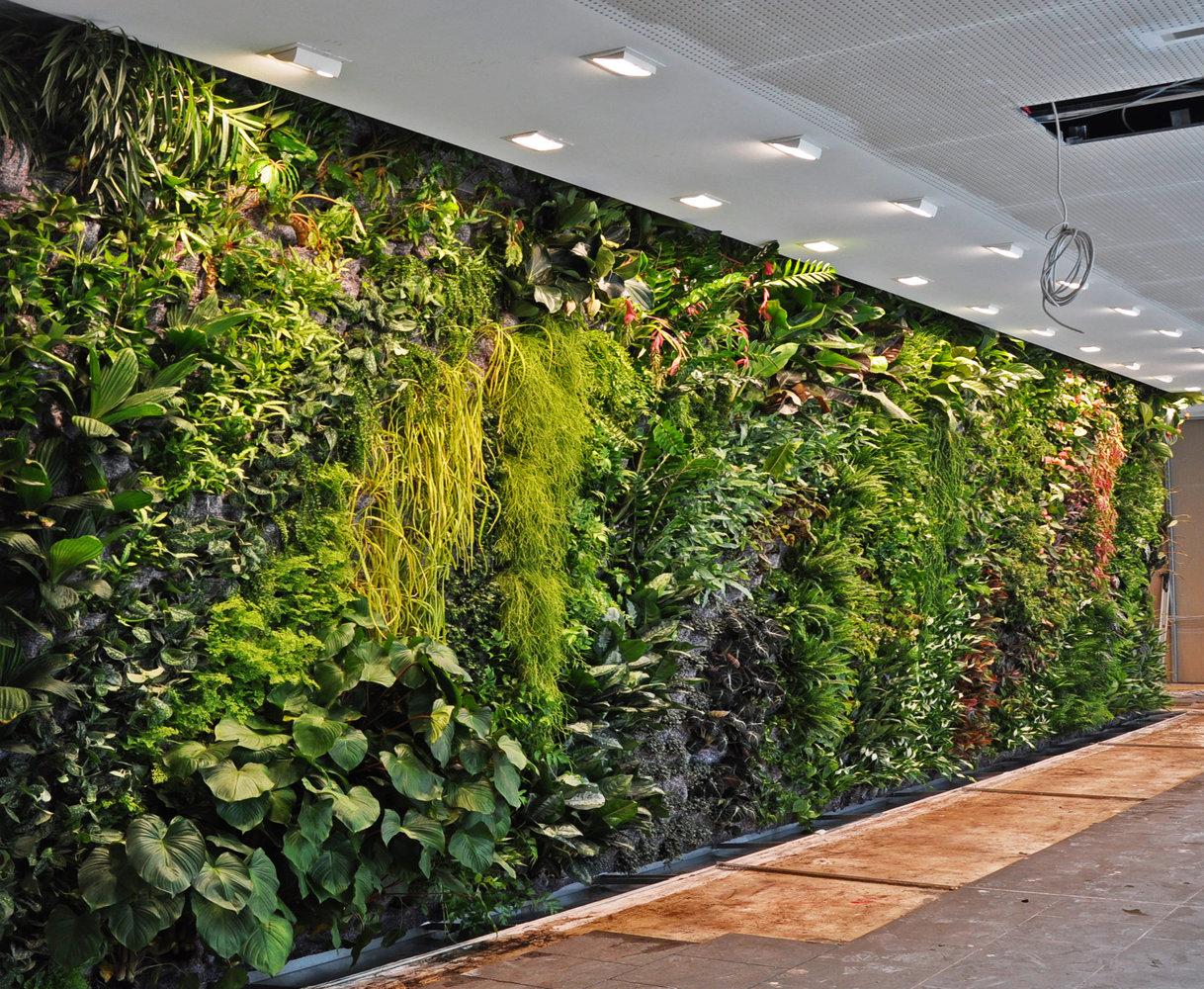 vertical garden 854 » Ingin Punya Taman Di Lahan Rumah Yang Minim, Ini Solusinya.